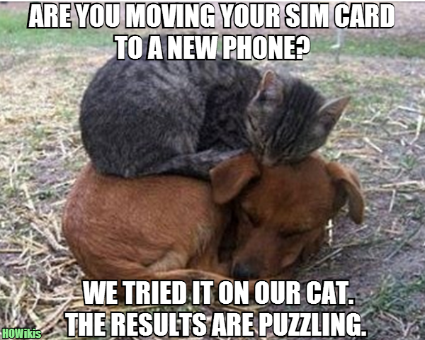 Move a Sim Card Between Samsung Galaxy S3, S4 or Note 2 and iPhone 3, 3GS, 4, 4S, 5